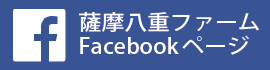 facebookj
